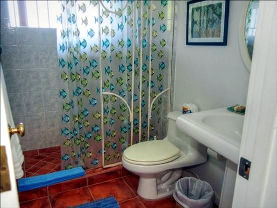 Bathroom-lower-level