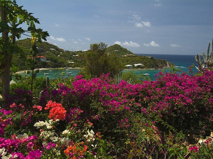 Eden's Whim garden view