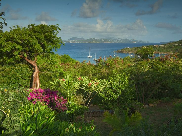 Great Cruz Bay view