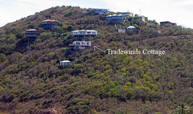 Tradewinds location on the Hill