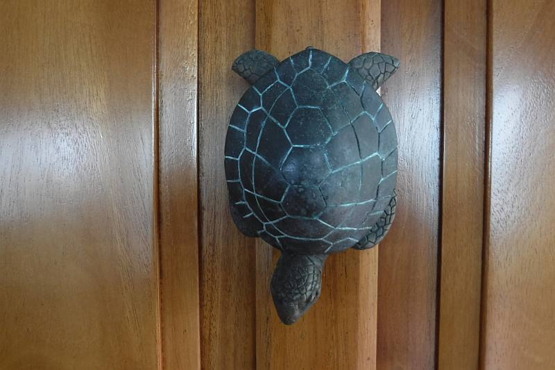 Turtle Door Knocker