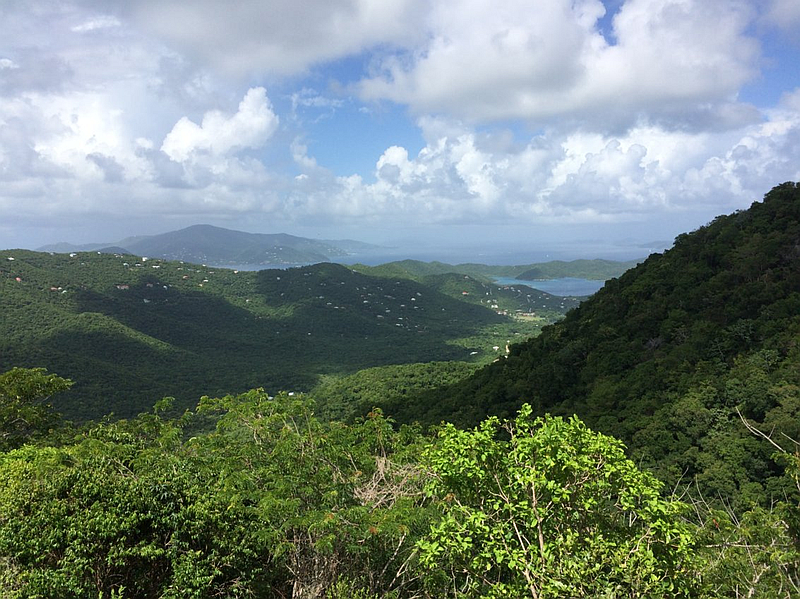 View into Coral Bay and BVI
