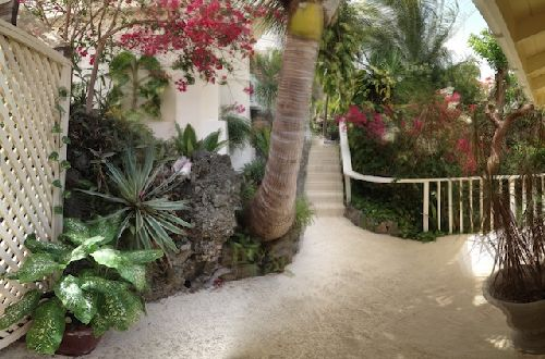 Entrance-Gardens-and-Orchid