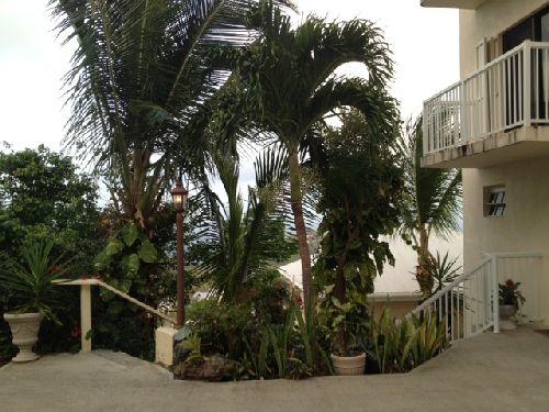 Parking-for-Garden-rentals