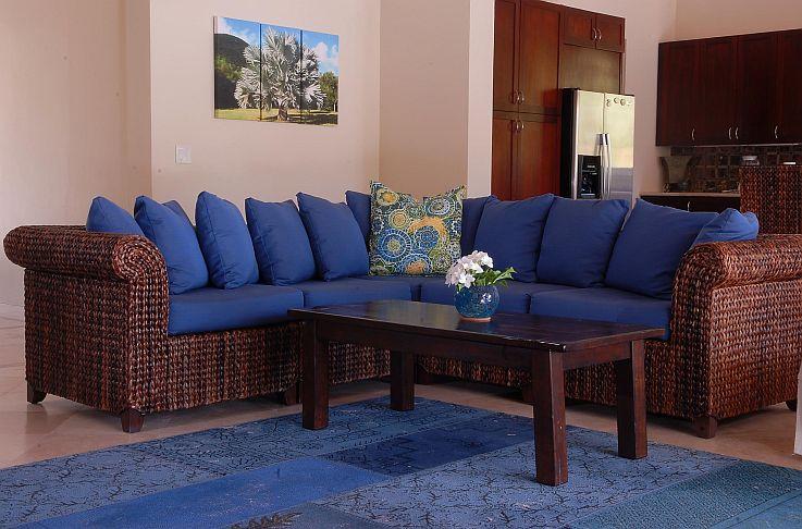 Bismarkia Couch