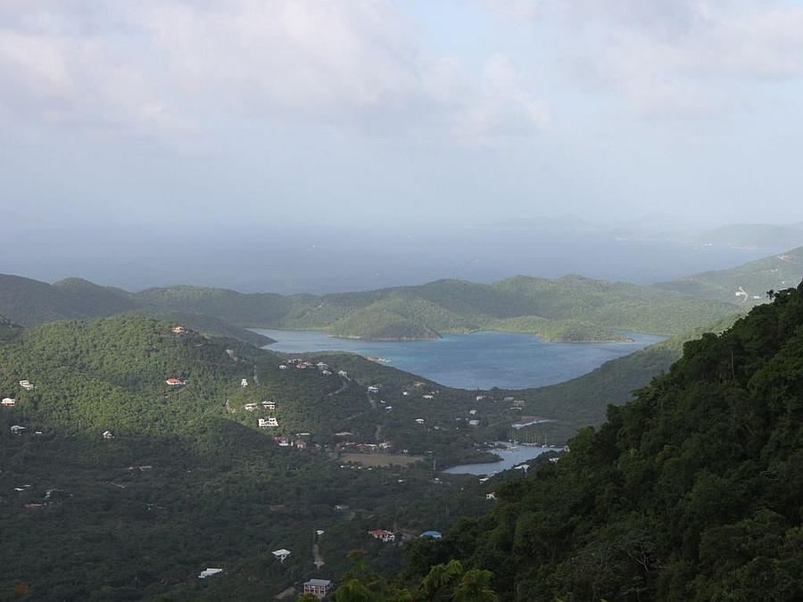 Coral Bay St John VI