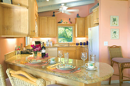 Kitchen at Idyllic Villa