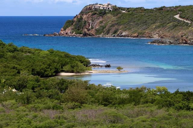Fish Bay View